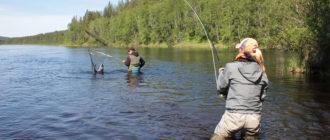 Рыбалка в Подмосковье платная без нормы вылова